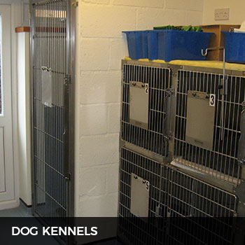 vetinary dog kennels