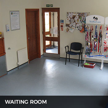 metrovets waiting area