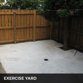 metrovets exercise yard